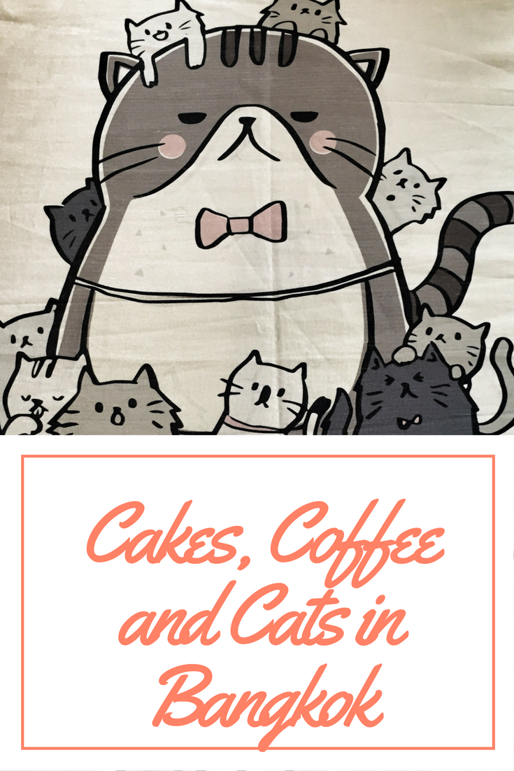Cakes, Coffee and Cats in Bangkok