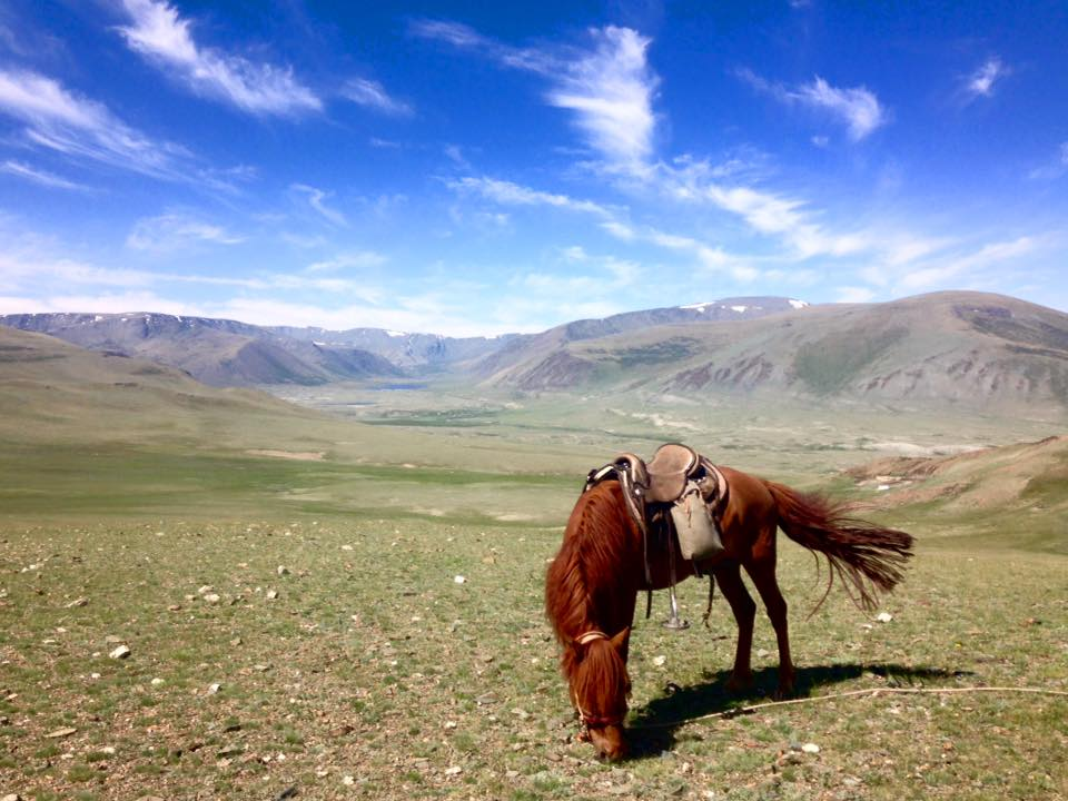 Misadventures in the Mongolian mountains.
