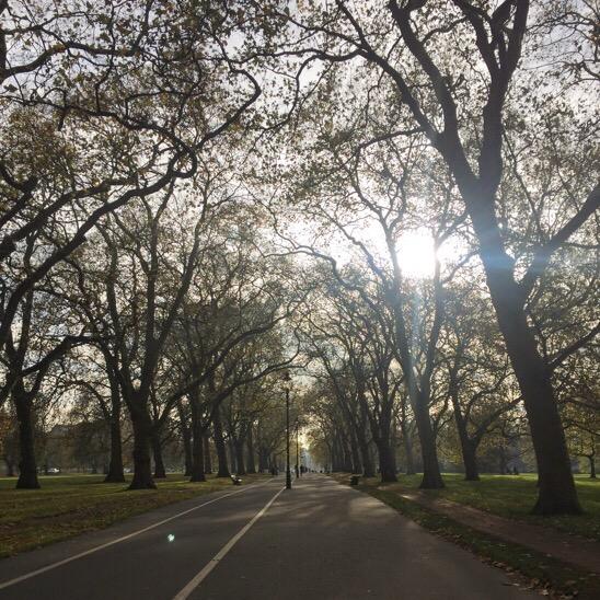 Walking along Hyde Park