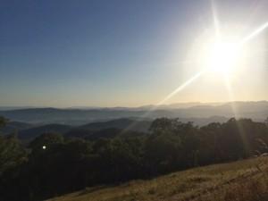 Sun rise King Valley Traveling Honeybird