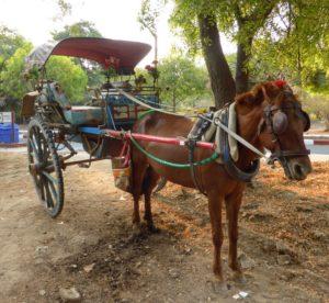 Pony express, Bagan