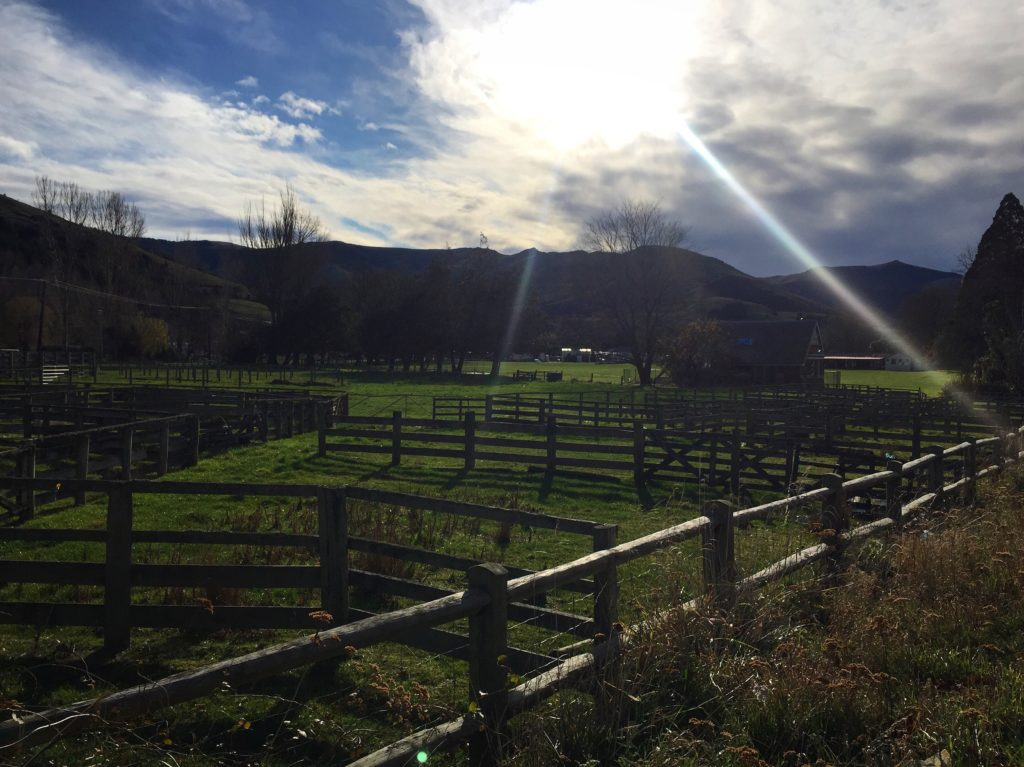Little River is the one town Kiwi town that you don't want to miss.