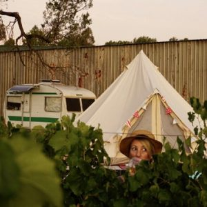 Glamping amongst the grapevines
