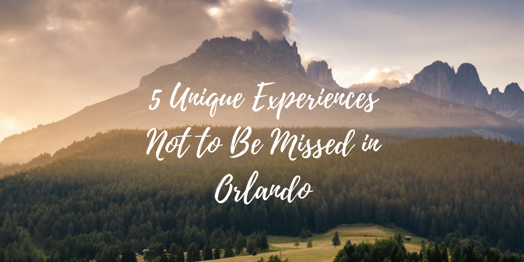 5 Unique Experiences Not to Be Missed in Orlando