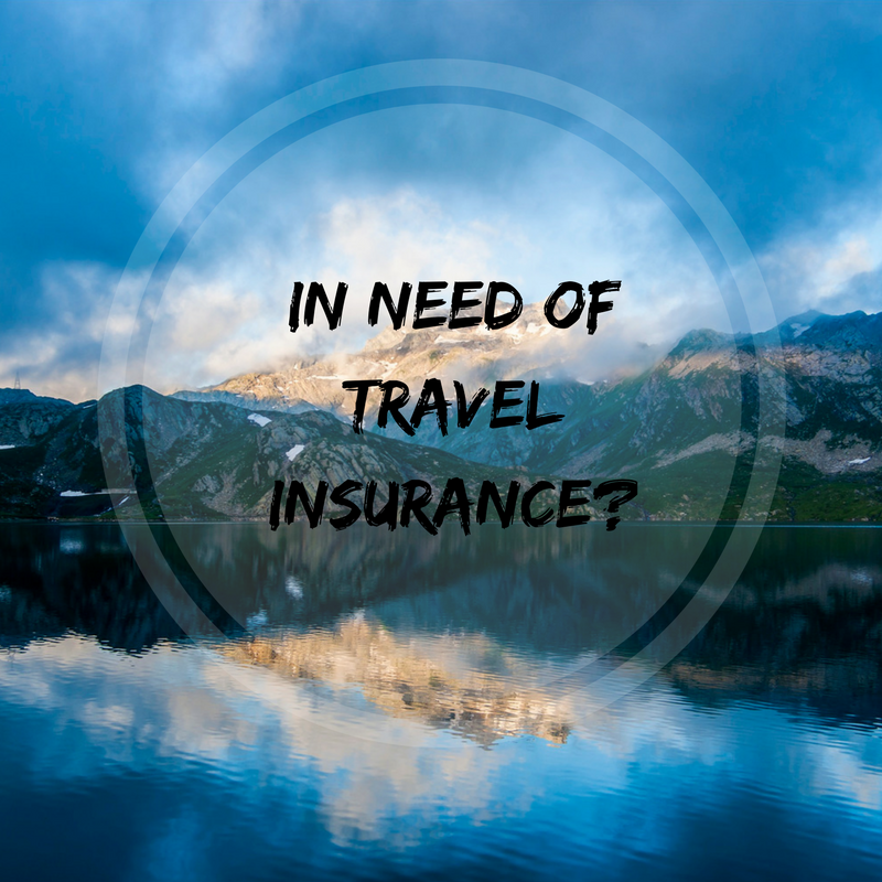 Travel Insurance Traveling Honeybird