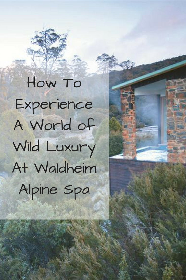 How To Experience A World of Wild Luxury At Waldheim Alpine Spa || Traveling Honeybird