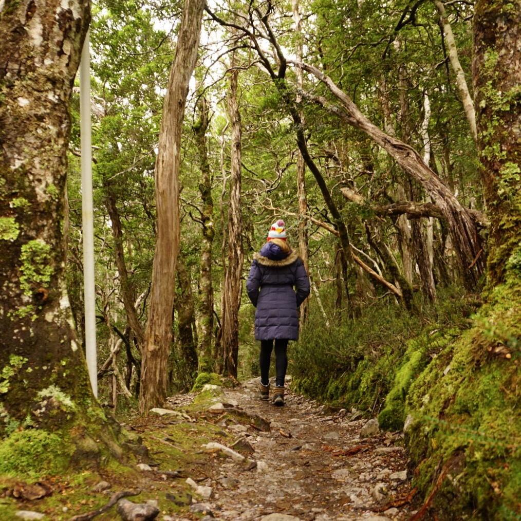 Take a hike in Tasmania