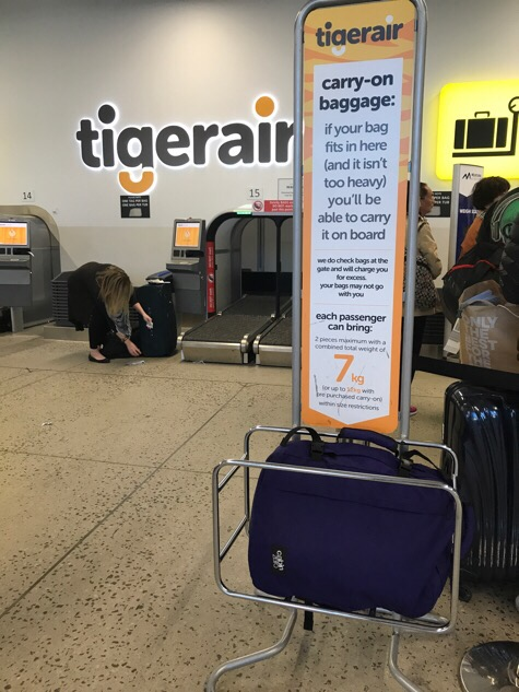 TIgerAir check in || Traveling Honeybird