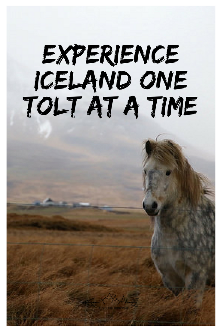 Experience Iceland One Tolt at a Time