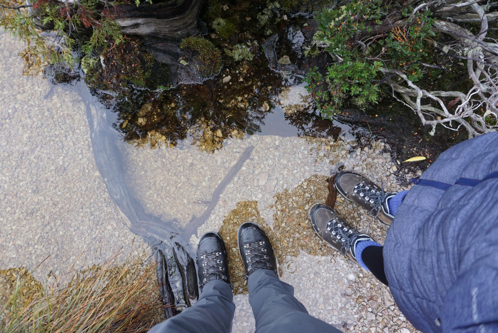 Tasmanian weather needs hiking boots