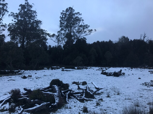 Snow at Cradle Mountain Tasmania