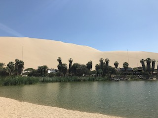 Huacachina Oasis Traveling Honeybird