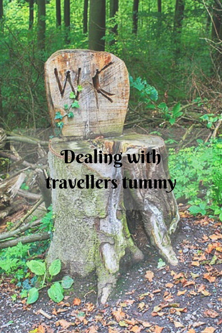 Dealing with travellers tummy || Traveling Honeybird
