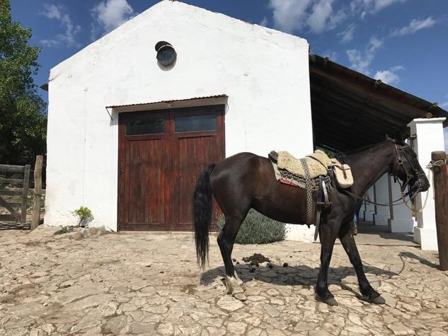 Stables at Los Potreros
