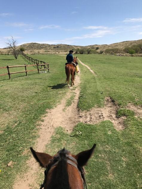 Horse riding at Los Potereros