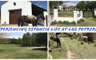 Experiencing estancia life at Los Potreros
