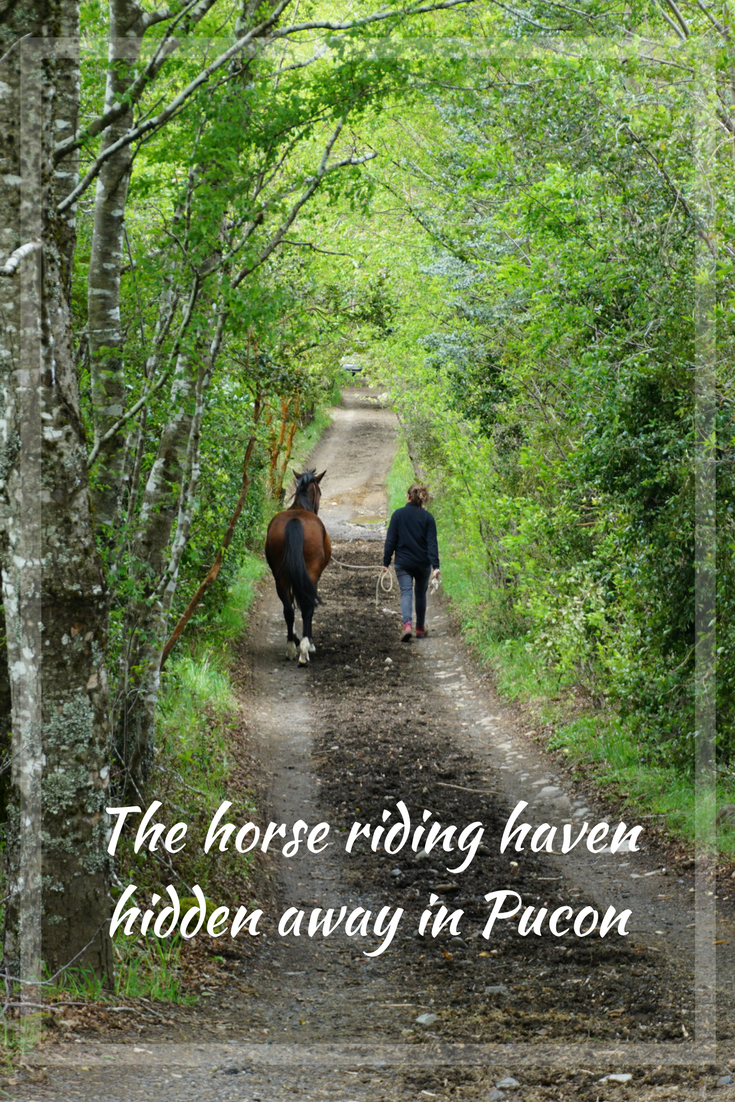 The horse riding haven hidden away in Pucon