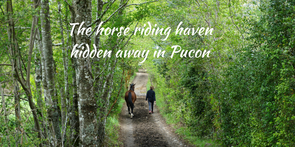 The horse riding haven hidden away in Pucon, Chile