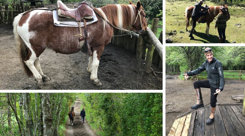 Horse riding in Pucon fun times