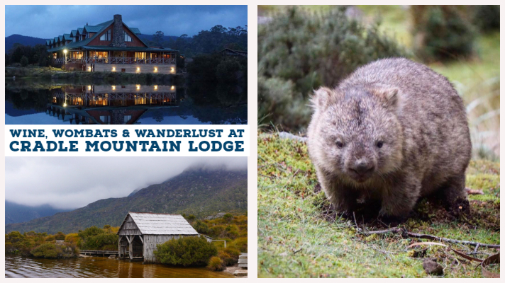 Wine, Wombats and Wanderlust at Cradle Mountain Lodge