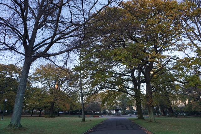 Parklands in Launceston