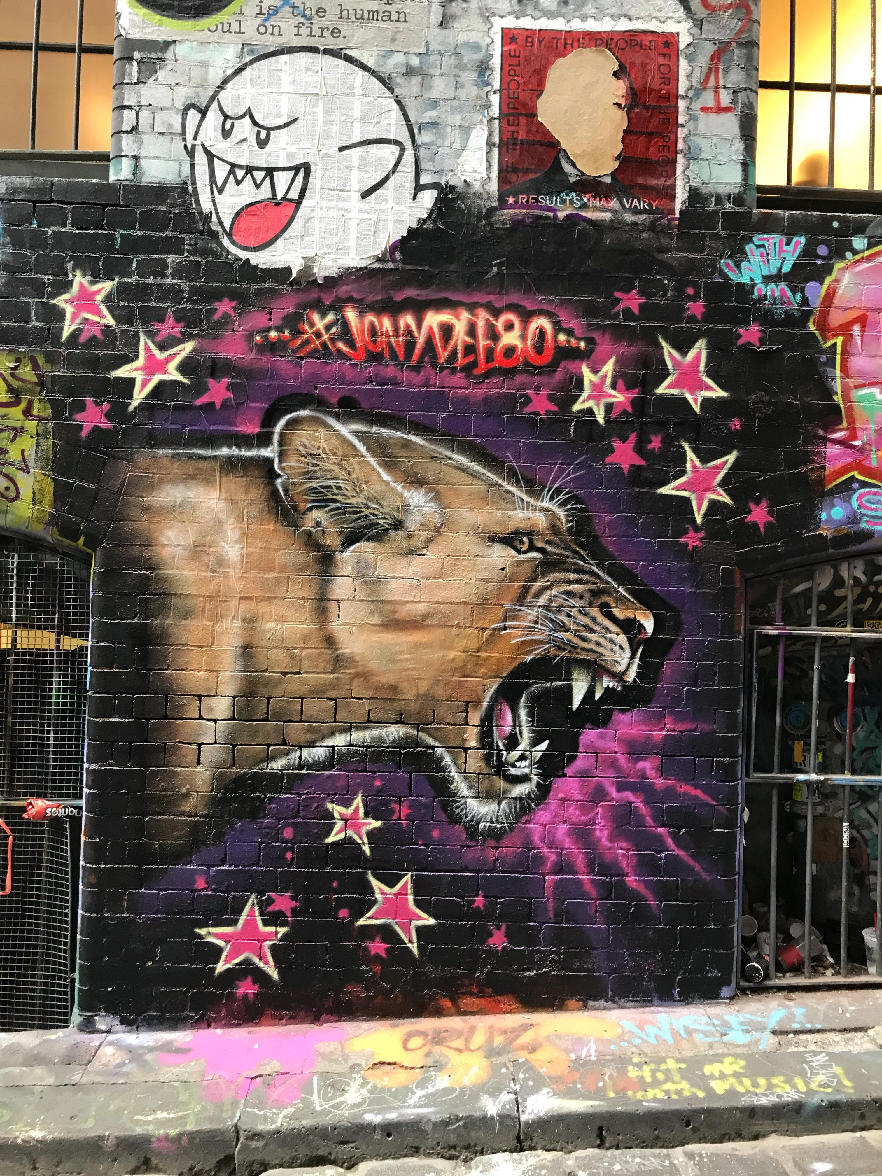 Street art hosier lane Melbourne
