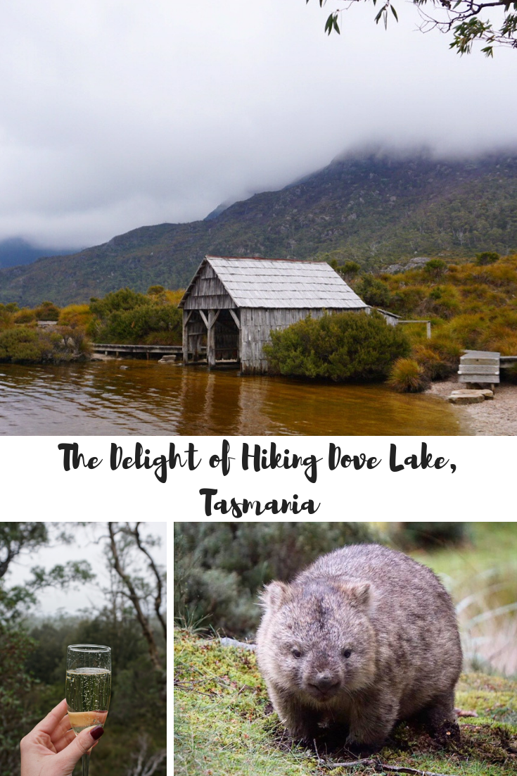 The Delight of Hiking Dove Lake, Tasmania.