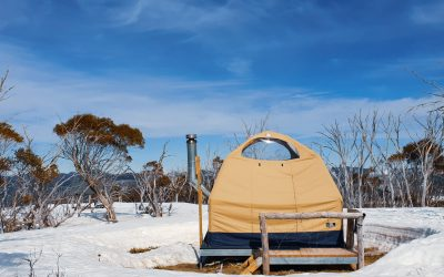 How to Have a Memorable Alpine Nature Experience in Australia