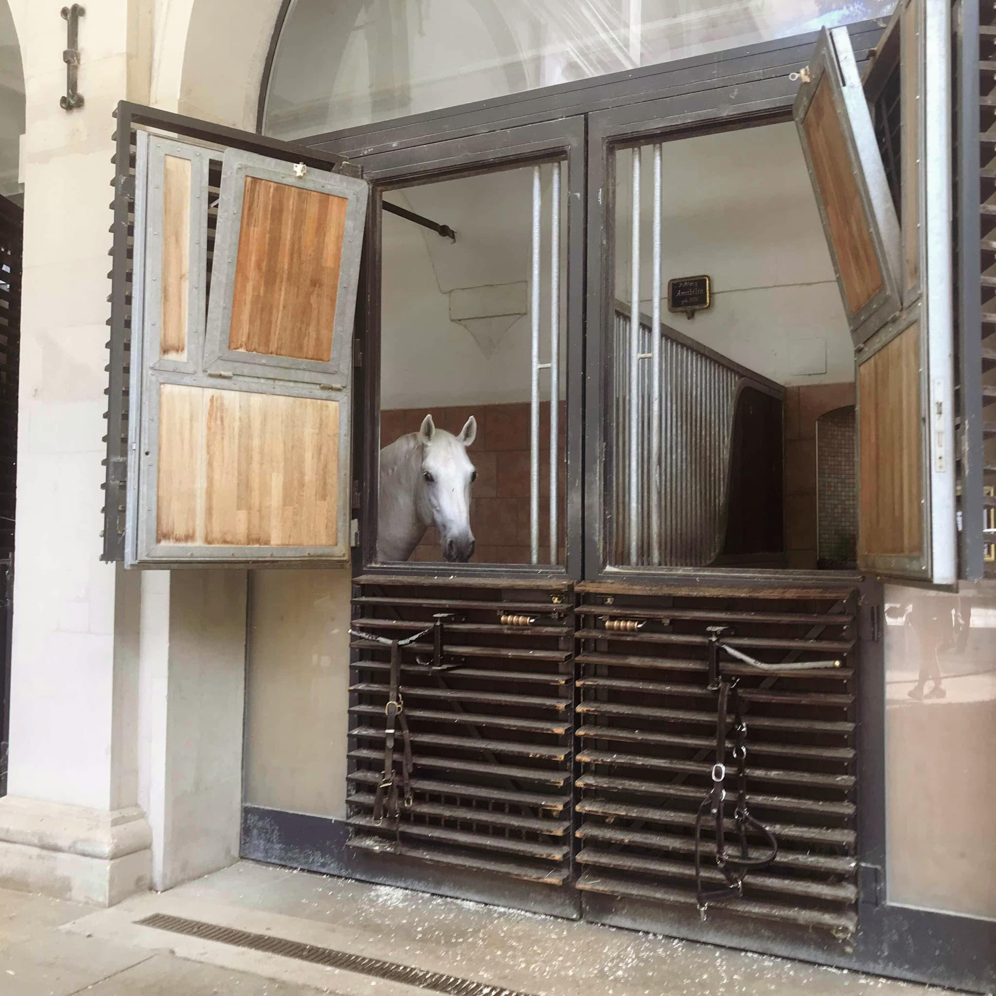 Spanish riding school stables