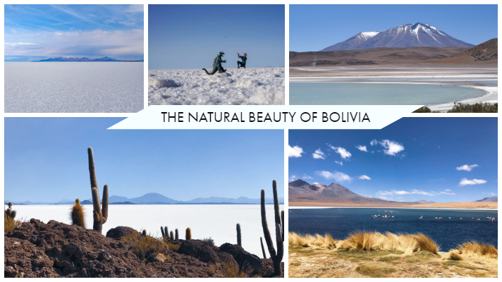 The Natural Beauty of Bolivia