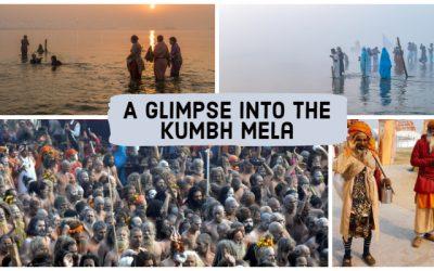 A Glimpse into the Kumbh Mela