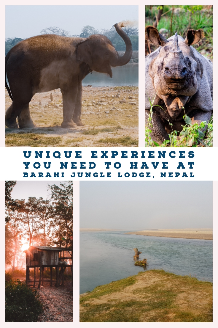 Barahi Jungle Lodge sits on the river Rapti and is home to one of Nepal's top luxury and sustainable hotels. A place to relax, enjoy Chitwan National Park and enjoy life. Learn how to get the best experiences during your time at Barahi Jungle Lodge, Nepal. #nepal #nationalpark #luxurytravel #sustainable #ecotraveller