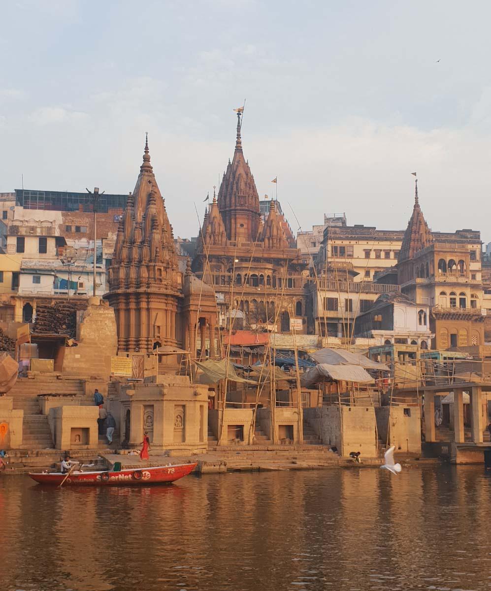 Seagulls on Ganges Varanasi
